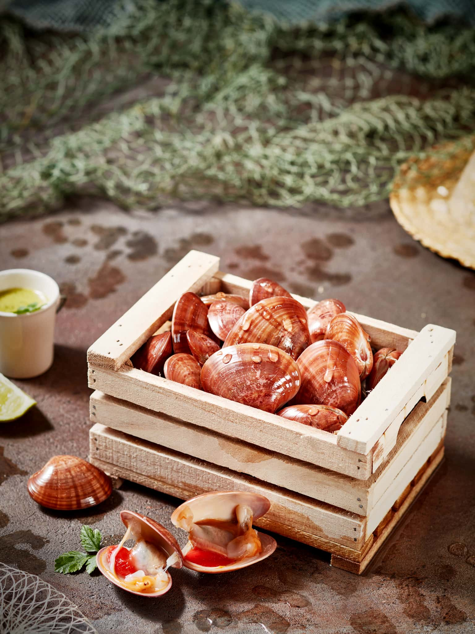 fotografo food commerciale advertising molluschi pescati pescheria storytelling trieste genova venezia bologna