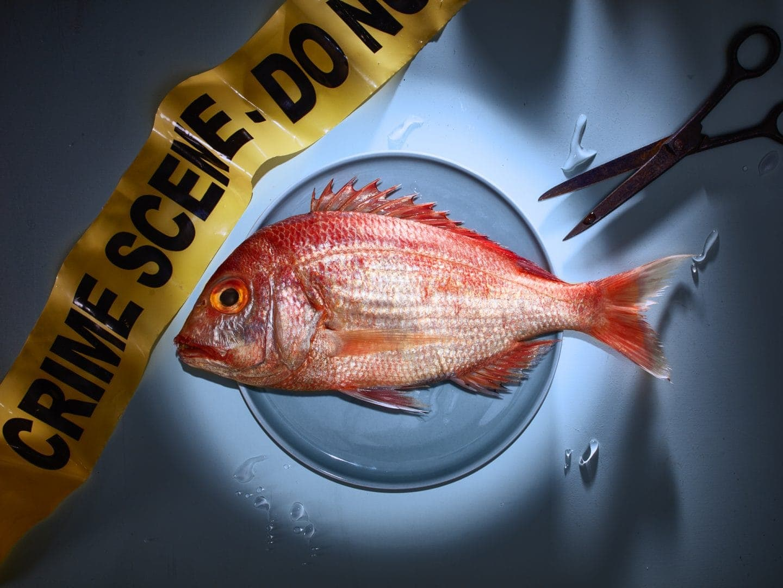 fotografo food concettuale parma CdF - Crime Scene n1 - Fish Dentex (1)